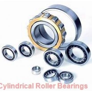 1.969 Inch   50 Millimeter x 4.331 Inch   110 Millimeter x 1.063 Inch   27 Millimeter  SKF NJ 310 ECM/C3  Cylindrical Roller Bearings