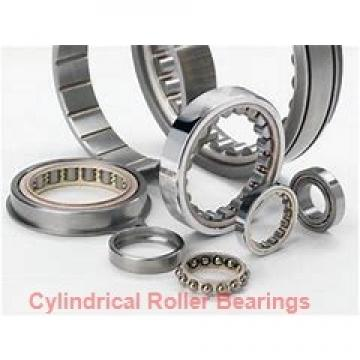 2.559 Inch | 65 Millimeter x 4.724 Inch | 120 Millimeter x 0.906 Inch | 23 Millimeter  SKF NUP 213 ECP/C3  Cylindrical Roller Bearings